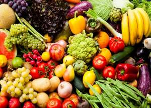 study nutrition online.