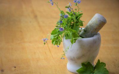 Medicinal Herbs Course Online.