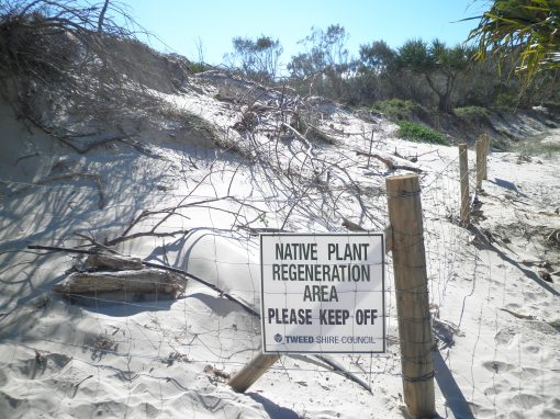 Landscape Restoration (Revegetation) Online Course