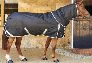 Horse Care C Online Course