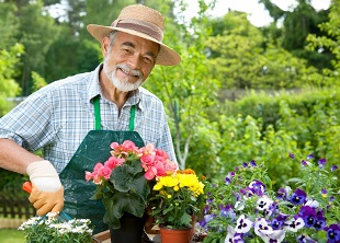 Horticultural Therapy Online Course