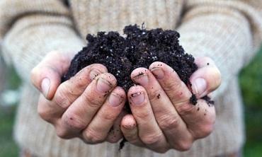 Soil Management (Crops) Online Course