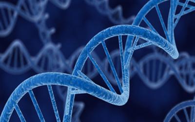 Genetics Online Course