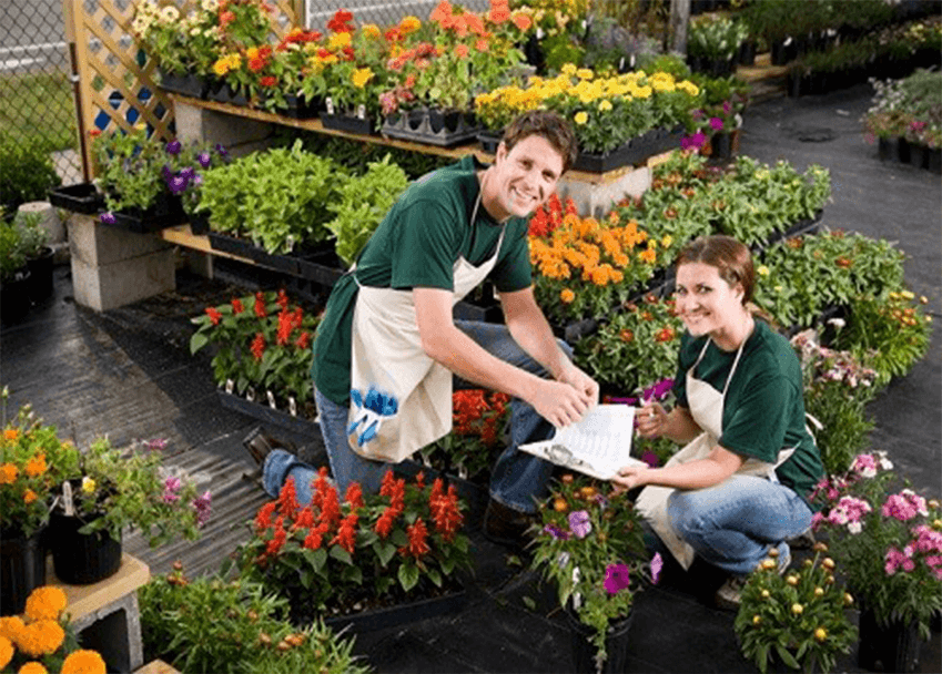 Horticulture A (Introduction) Online Course