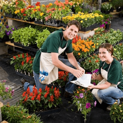 Horticultural C (Plant Health) Online Course