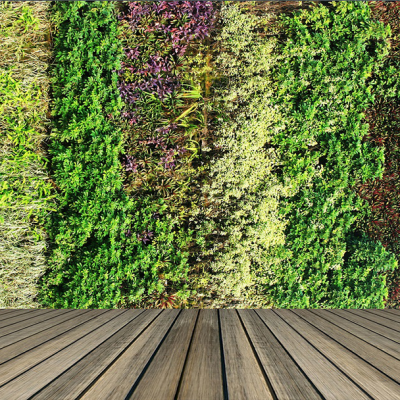 Green Walls and Roofs Online Course
