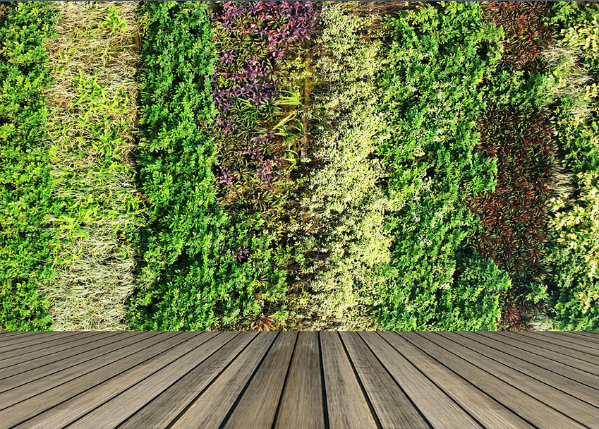 Green Walls And Roofs Online Course Careerline Courses