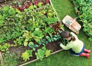 Home Gardening Courses