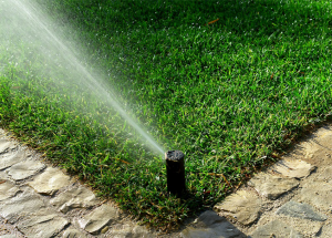 Horticultural Irrigation Courses